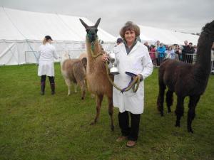 Mungo champion berkshire show