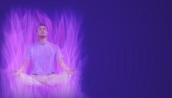Resultado de imagen para foto de la llama violeta