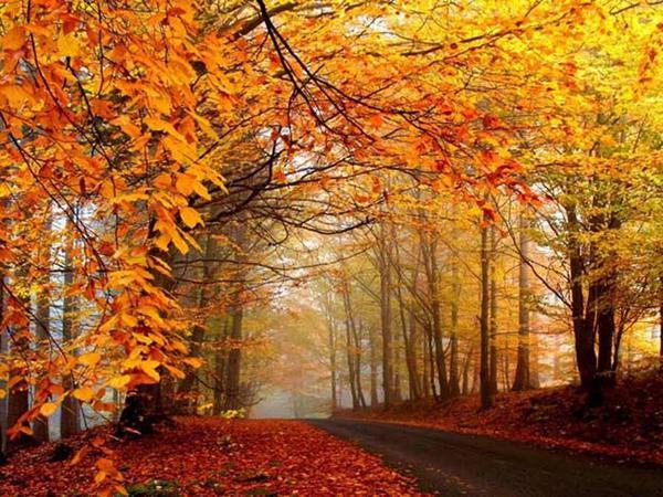 Que ver en otoño en Italia del sur