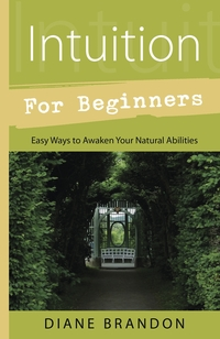 Intuition for beginners diane brandon photo