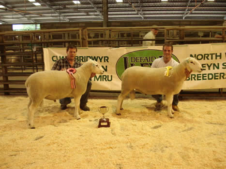 Ruthin Champion 2011 And 3rd Prize