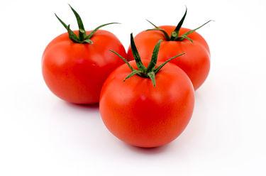 tomates lliria