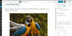 Gutenberg: guía ilustrada del mejor editor de WordPress de toda la historia