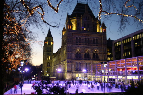 Skating at Natural History Museum