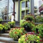 Flowers on Mainstreet Clinton