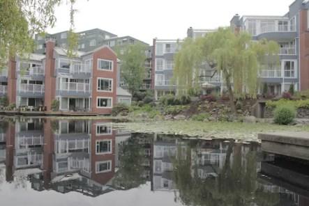 Lilypad Pond, Kitsilano