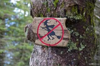 No Witches in Bergen!