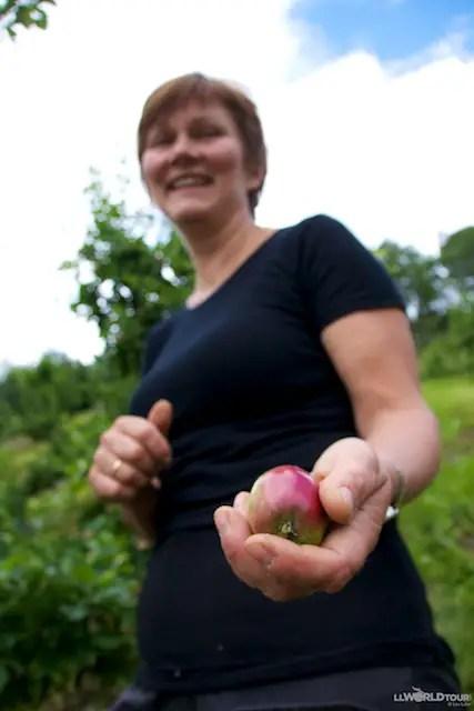 Gro Ulgenes and a Tiny Apple