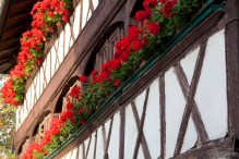 Half Timbered Houses Abound!