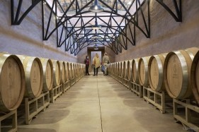 San Lucas Winery Barrells