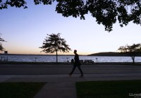 Things to do in Lake Geneva