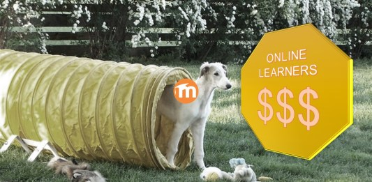 What An Online Program Manager Is, And How Moodle Fits In