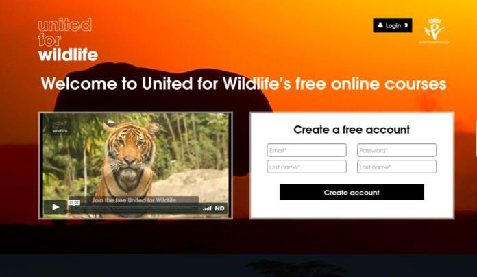 Draw Animal Inspiration From United For Wildlife Free Moodle Education