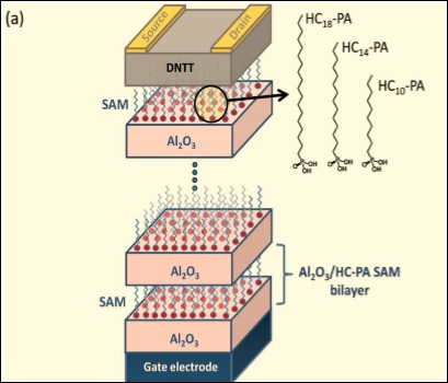 enhancing-carrier-mobility-in-organic-transistors-figura-1