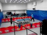 """Mesna zajednica """"Ovča """" organizuje školu stonog tenisa i besplatne termine"""