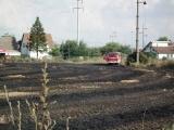 Požar na poljani u Centru V u Borči – 10.07.2013