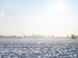 Galerija | Zima na levoj obali Beograda - LOBI kao HOBI
