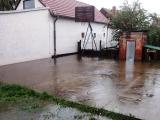 Poplava u dvorištu u Tršićkoj ulici u Borči - 15-05-2014