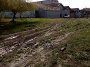 Izrovaren parkić u Borči, LOBI