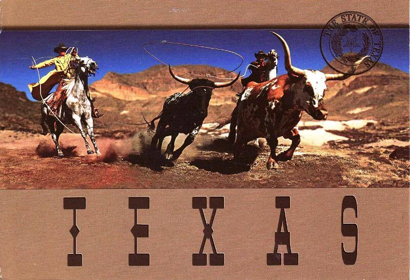 kaubojstina-texas-konji