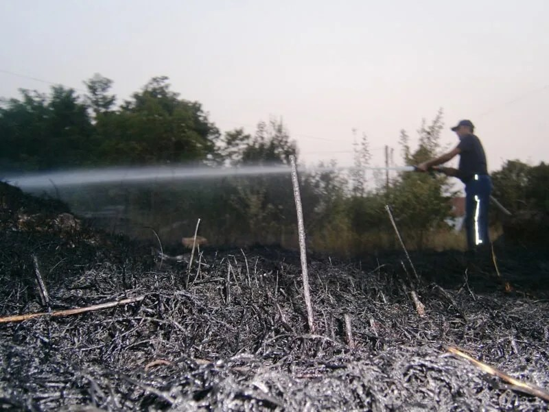 Požar u Borči