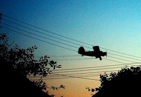 Danas zaprašivanje komaraca iz vazduha zbog virusa Zapadnog Nila - 12.08.2013