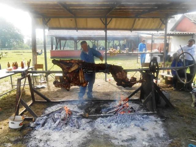 Praznik rada obeležen na Besnom Foku uz vola na ražnju i narodne igre