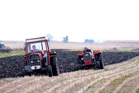 Podeljeno gorivo na Paliluli za presejavanje njiva sa kukuruzom i sojom -2014