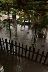 poplava borca 3 2019 06 24