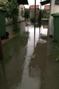 poplava borca 7 2019 06 24