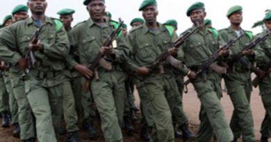Quelles sont les stratégies pour  éradiquer l'insécurité à l'est de la RDC ?