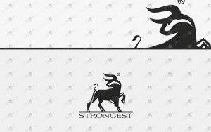 strong bull logo for sale premade logos
