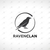 Modern & Creative Raven Logo For Sale