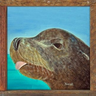 """Salty The Sea Lion"""
