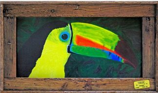 """Keel Billed Toucan"""