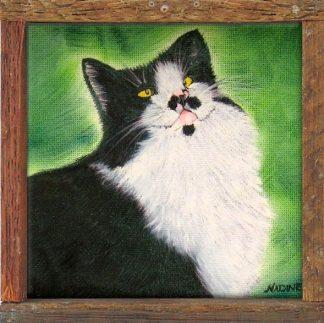 """Charlie Chaplan"" Famous Hemingway Cat"