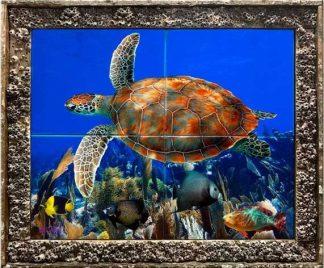 Soaring Turtle
