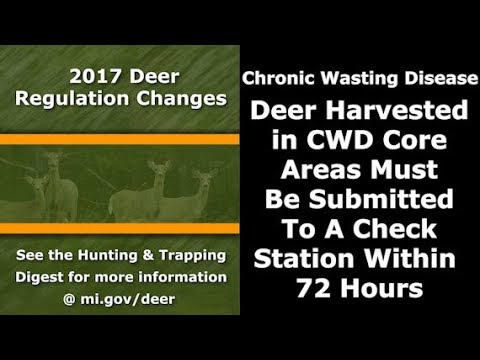Michigan Changes Deer Hunting Rules