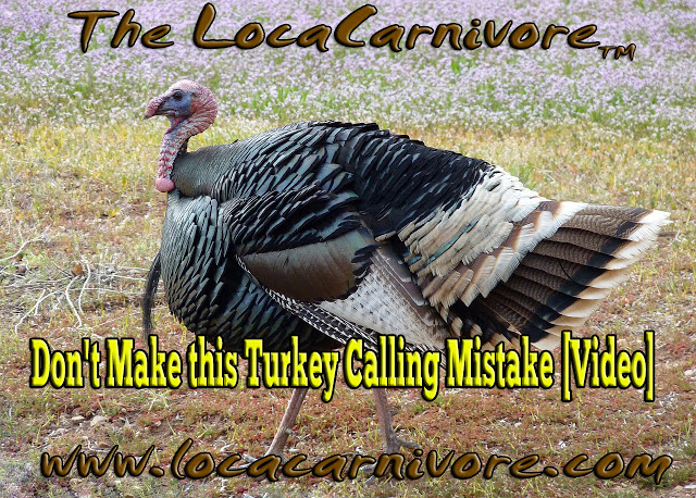 Don't Make this Turkey Calling Mistake [Video]