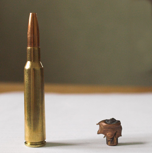 Top 10 Low-Recoil Hunting Cartridges (The LocaCarnivore Expert)