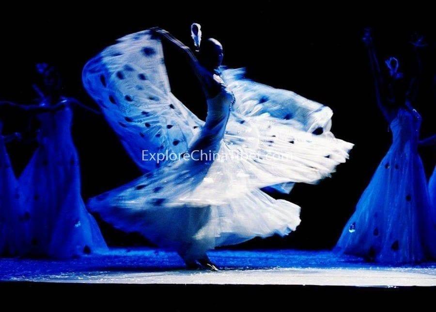Yunnan Impression Show-10-282