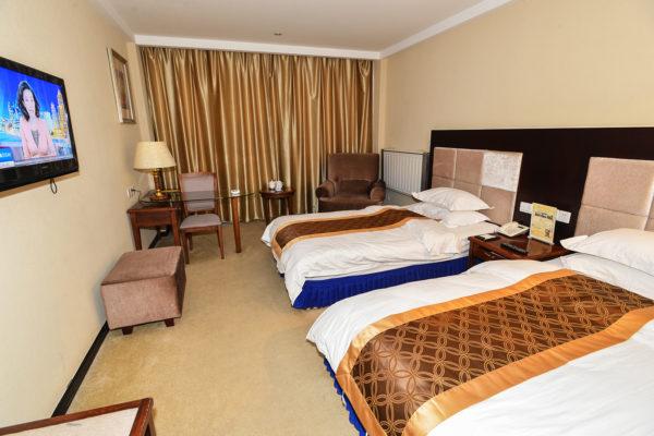 Lhasa Ganggyan Hotel European Suite