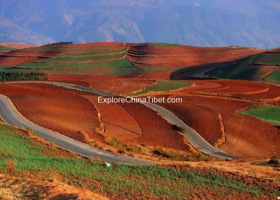 Dongchuan Red Land Tour 5