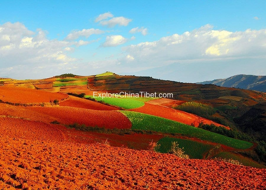 Dongchuan Red Land Tour 6