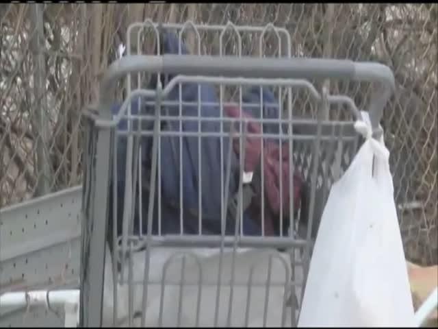 Homeless report_50116304