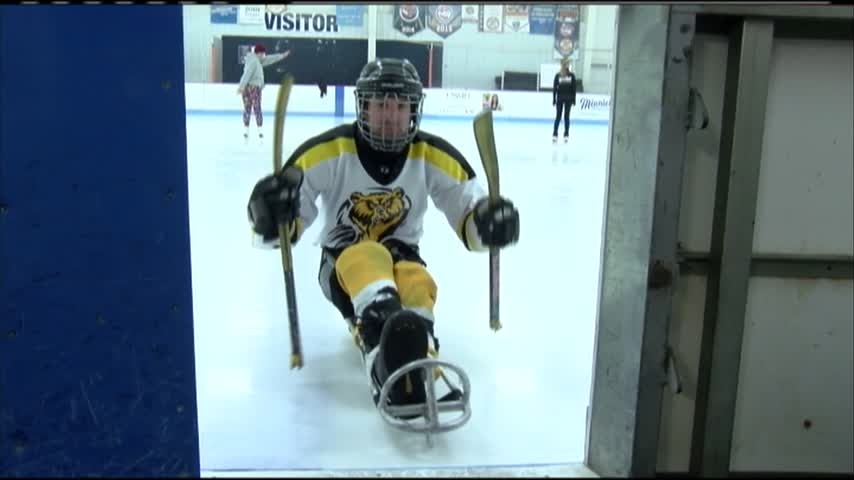 Sled hockey_04467917
