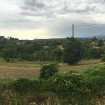 Visite_de_la_Régie_Agricole_de_Mouans-Sartoux_(7)