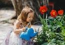 Plants for your Kid Gardener