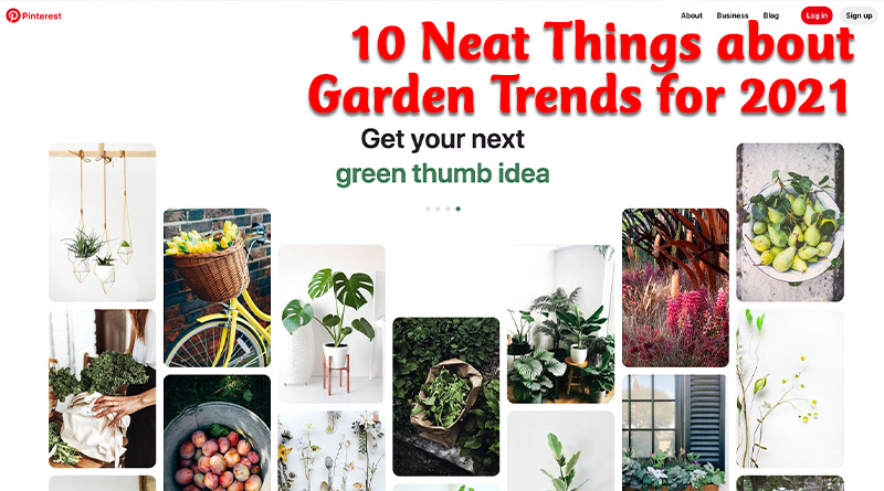 10 neat things about garden trends for 2021