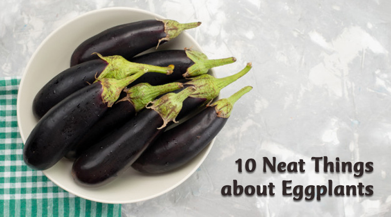 10 neat things about eggplants